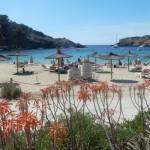 5 redenen waarom (ook) ik verliefd op Ibiza ben