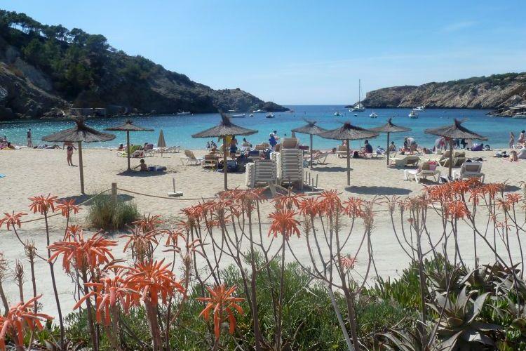 Verliefd op Ibiza - vakantie