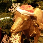 Sfeervolle kerstmarkten in Münster