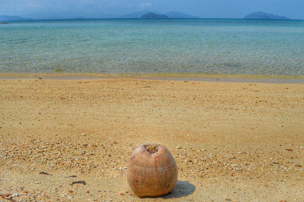 koh mak thailand kokosnoot