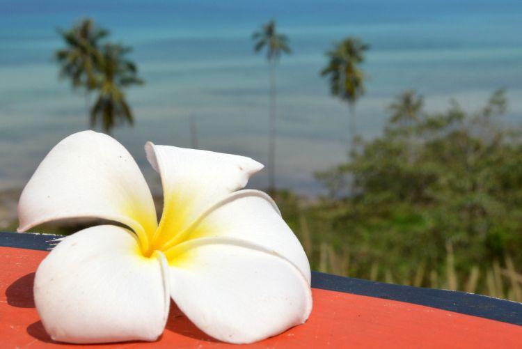 witte reisfoto's koh mak thailand