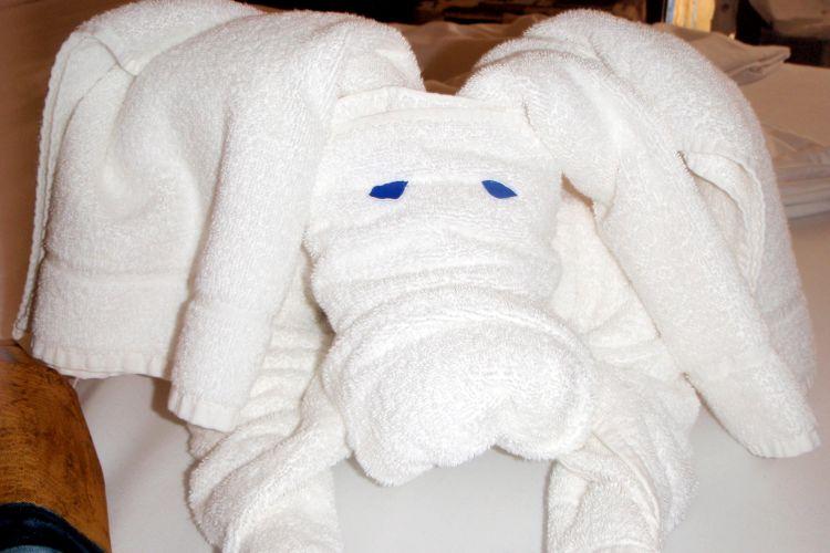witte reisfoto's handdoekkunst