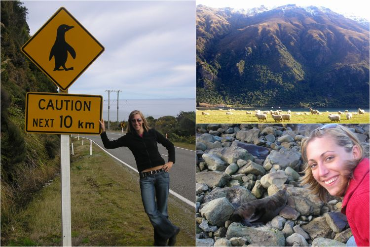 nieuwzeeland bucketlist dieren