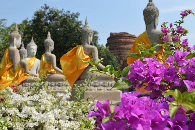 mooiste tempels ayutthaya (16)