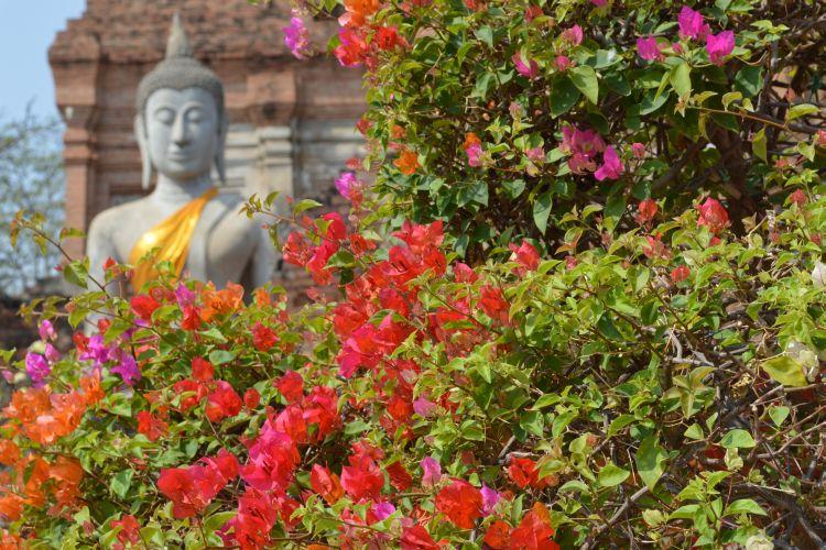 mooiste tempels ayutthaya (19)