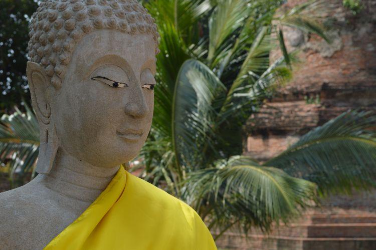 mooiste tempels ayutthaya (20)