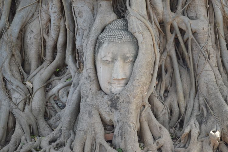 mooiste tempels ayutthaya (22)
