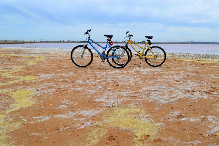 roze zoutmeer torrevieja (12)