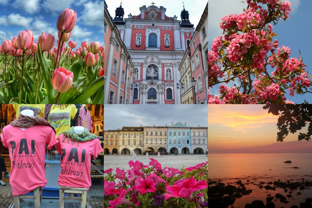 roze maandag