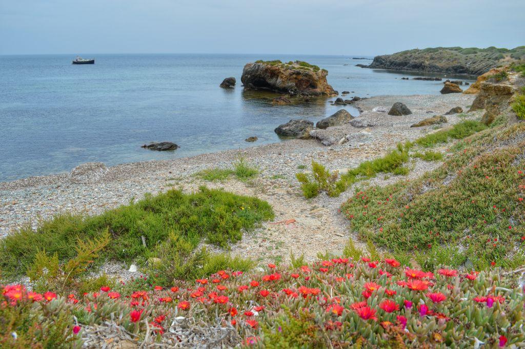 Alicante boottocht tabarca (7)
