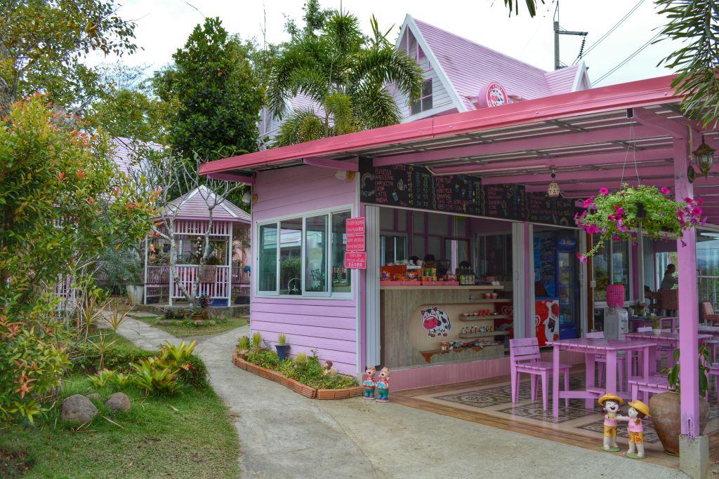 Roze bezienswaardigheden (2)