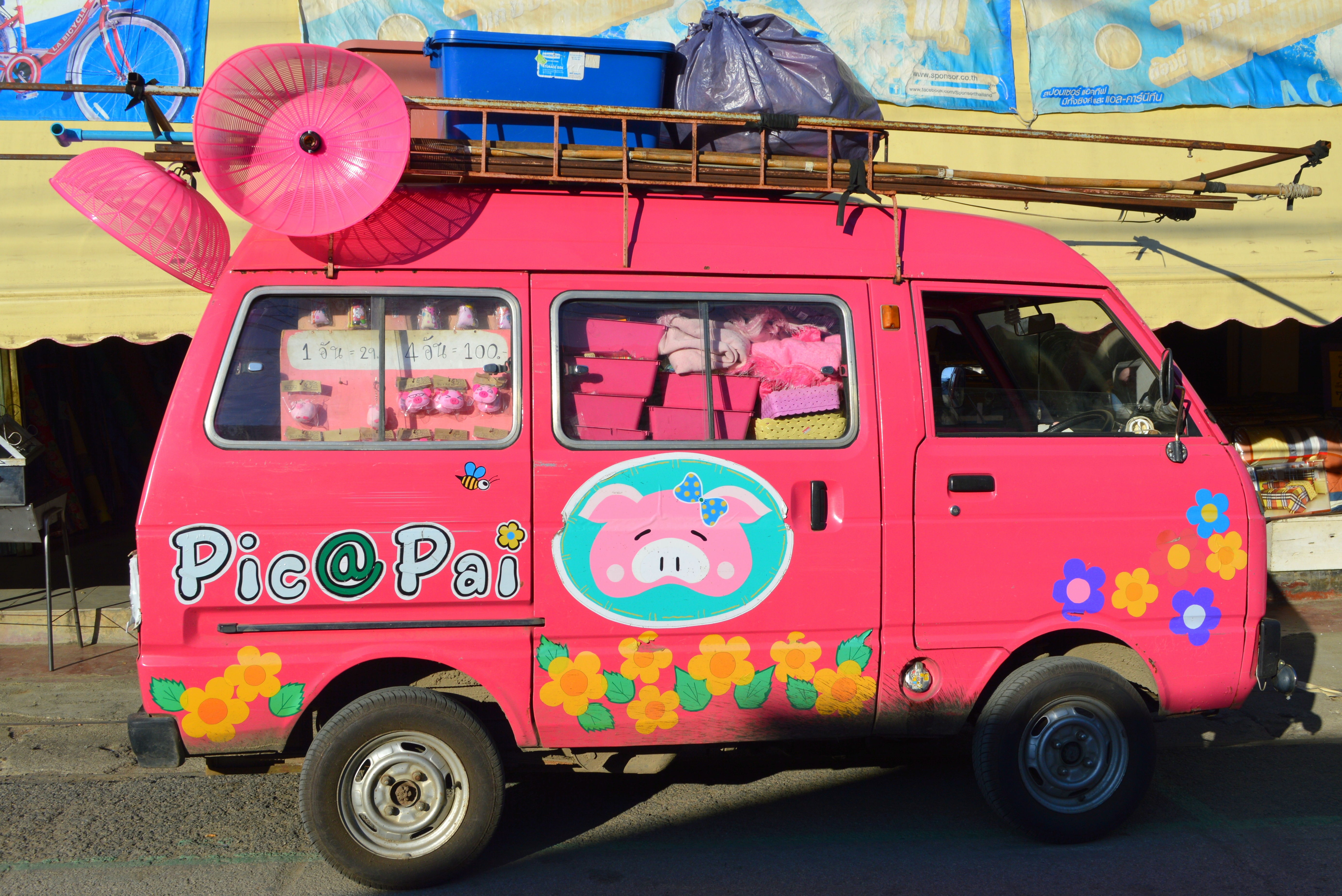 roze reisfoto's (4)