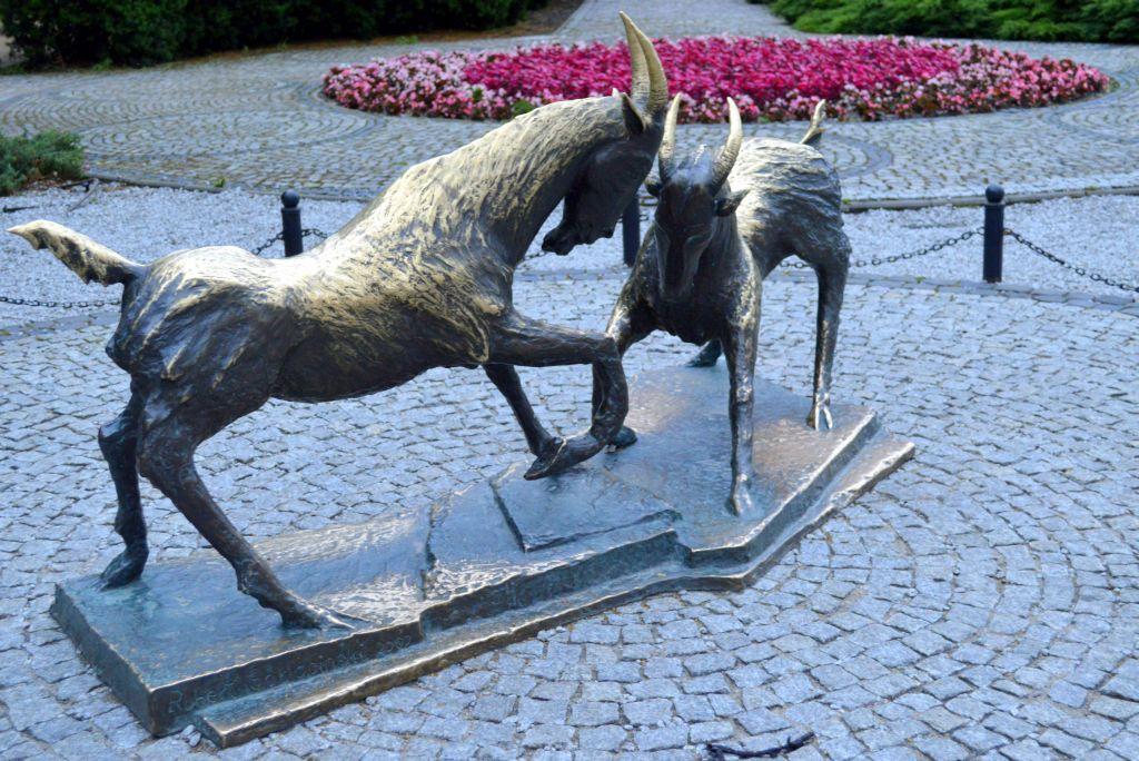 wat te doen in poznan - geiten symbool van de stad