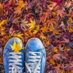 De leukste stedentrips in de herfst