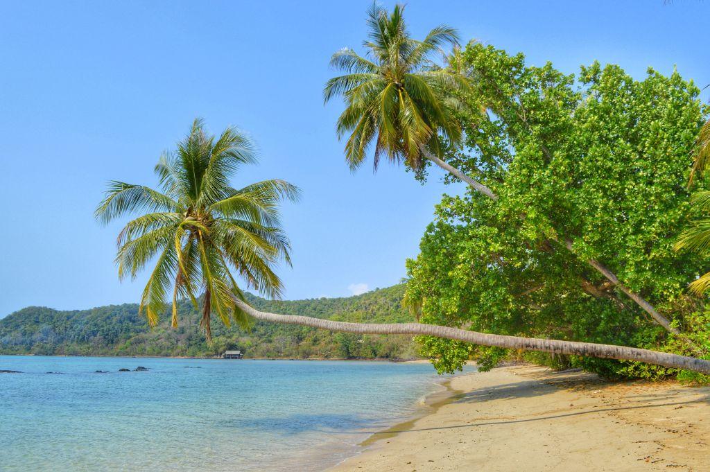 fietsen op koh mak - palmbomen strand