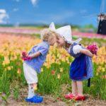 10 reisbloggers over hun favoriete plekje in Nederland