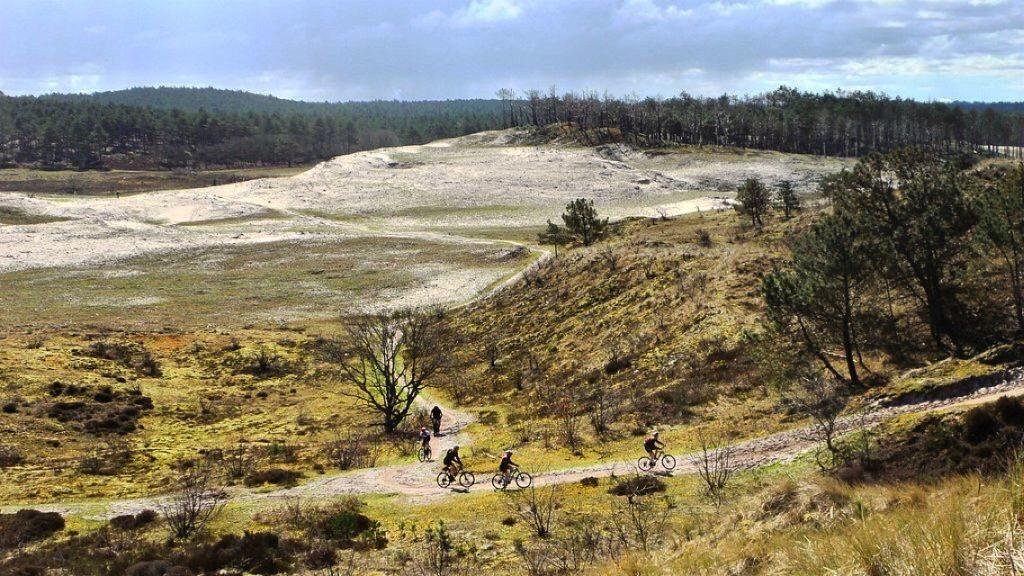 Mooiste plekken Nederland: de Schoorlse duinen