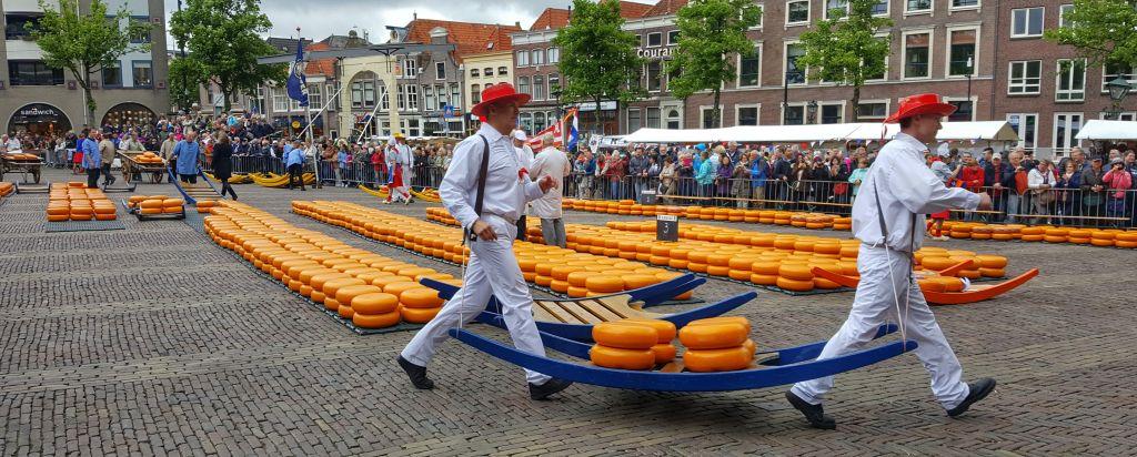 alkmaar waagplein kaasmarkt