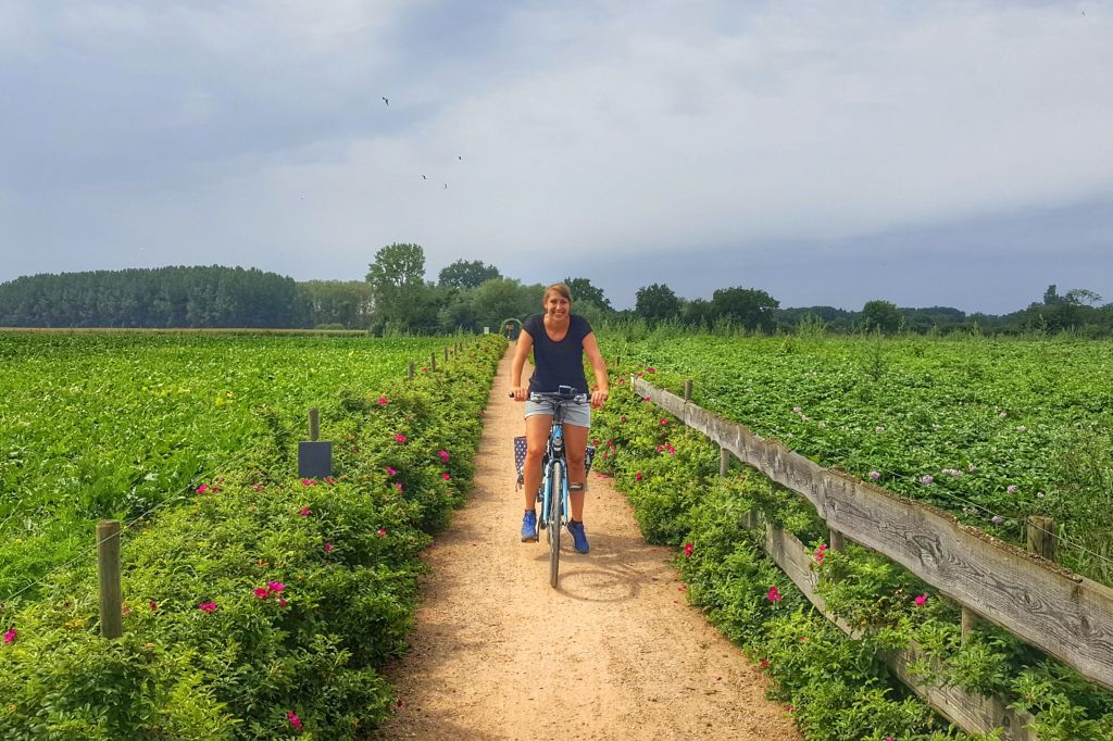 fietsen-langs-de-maas-in-limburg-11-1