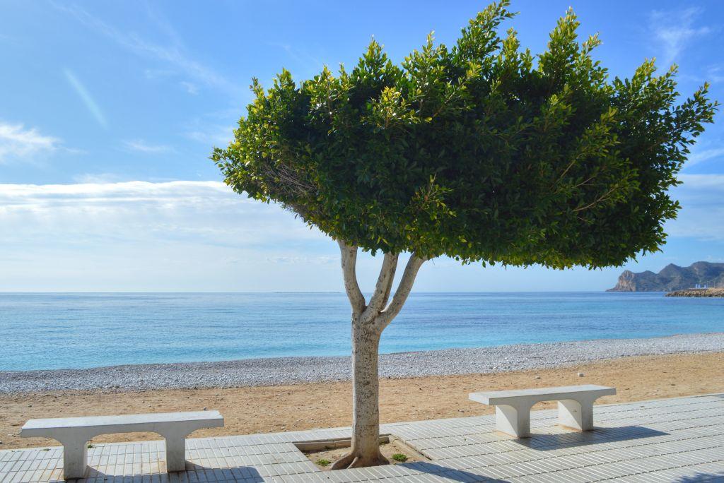 Mooiste plekjes Costa Blanca - Altea