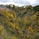 Heerlijke herfstwandelingen in de Ardennen