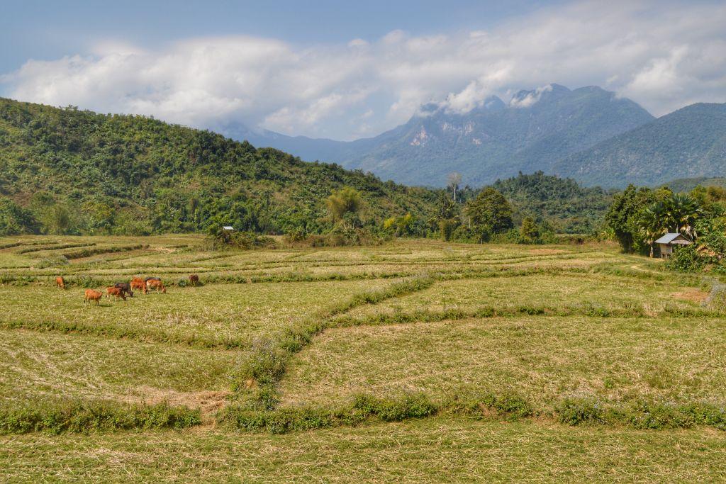 Hiken Nong Khiaw