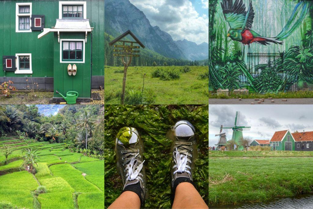 groene reisfoto's