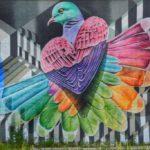 Fotoblog: kleurrijke streetart in Arnhem