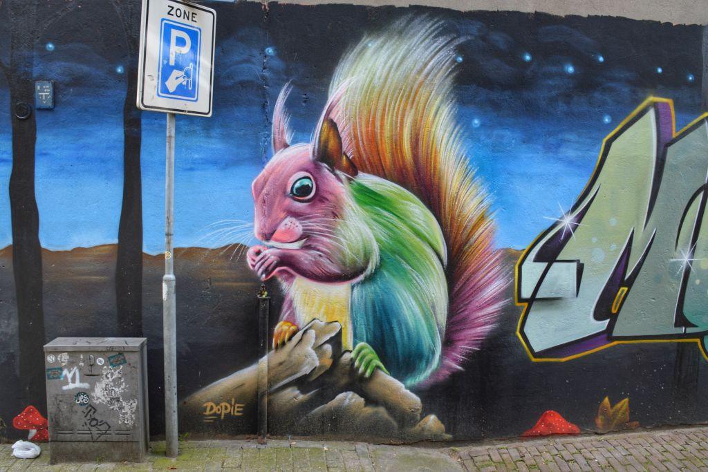 Eekhoorn Dopie Arnhem
