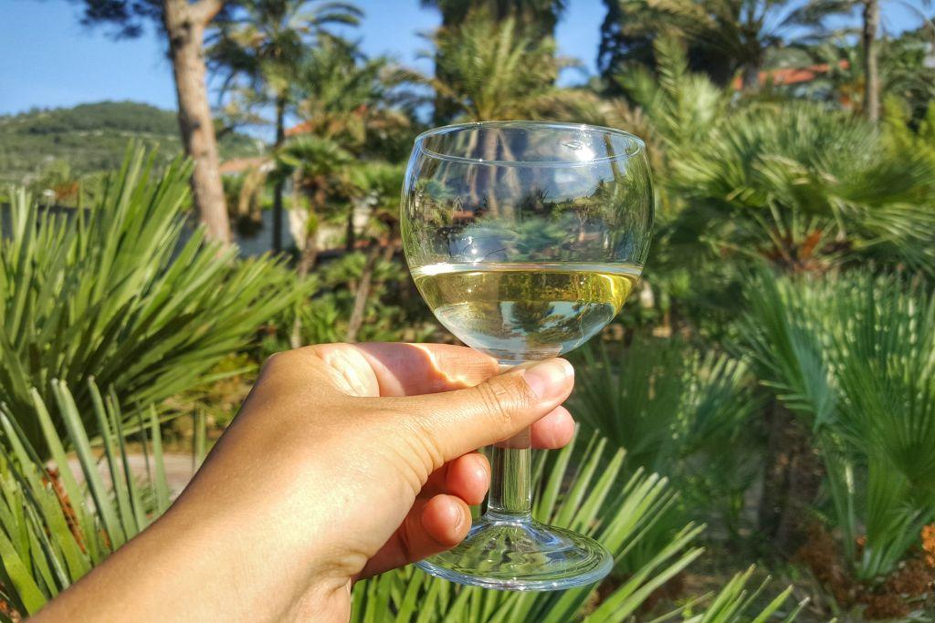 Wijn - Vis Kroatie