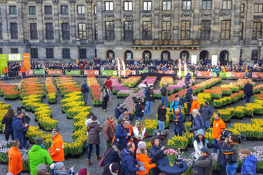 Nationale tulpendag Amsterdam