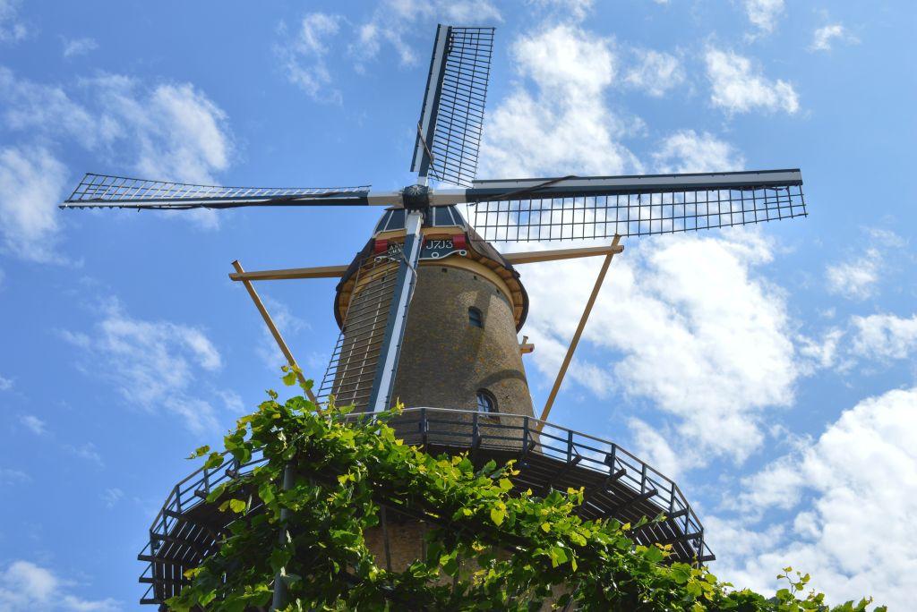 Molen Dordrecht
