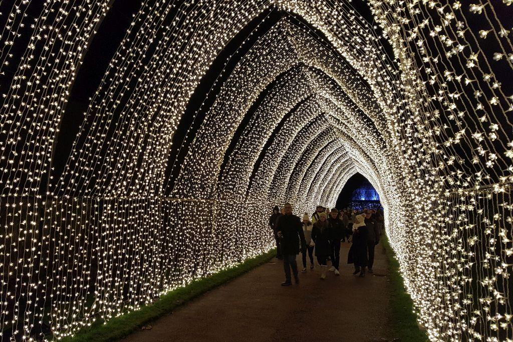 Christmas at the botanics Edinburgh