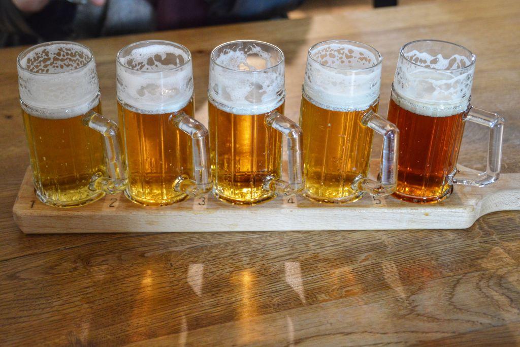 Bierbrouwerij Cvikov