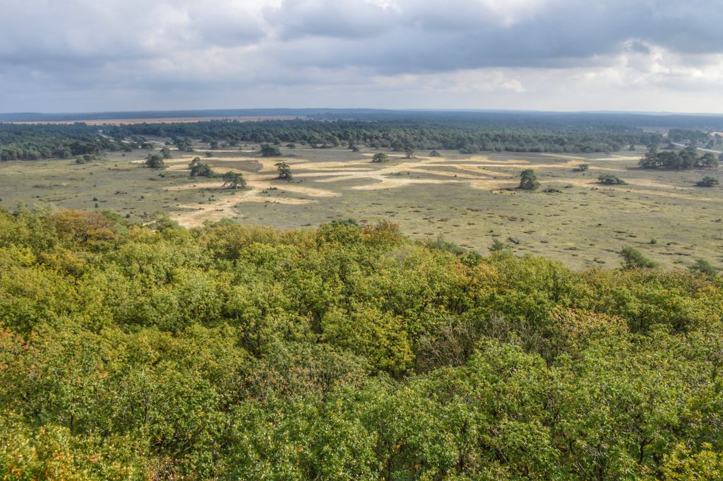 Uitzicht de Hoge Veluwe - Mooiste plekjes Veluwe