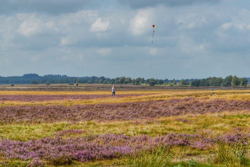 Vliegeren Ginkelse Heide in Ede