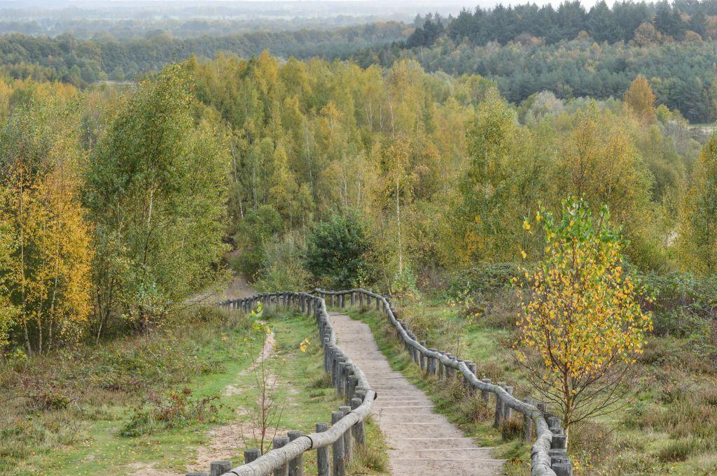 Natuurgebied Kwintelooijen - Rhenen