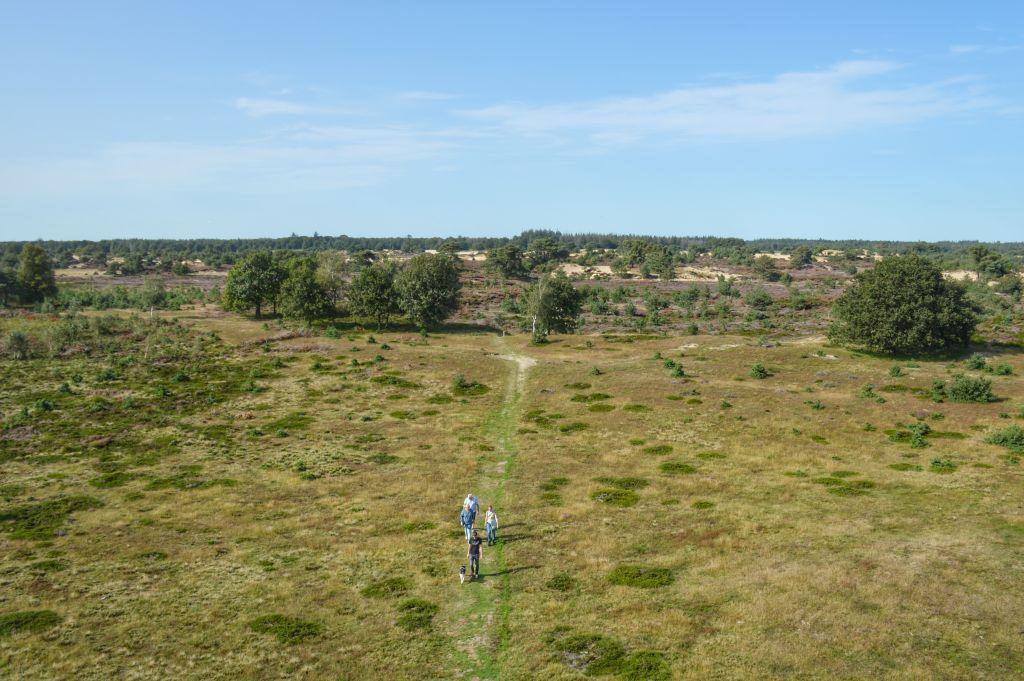 Uitzicht uitkijktoren de Kale Duinen