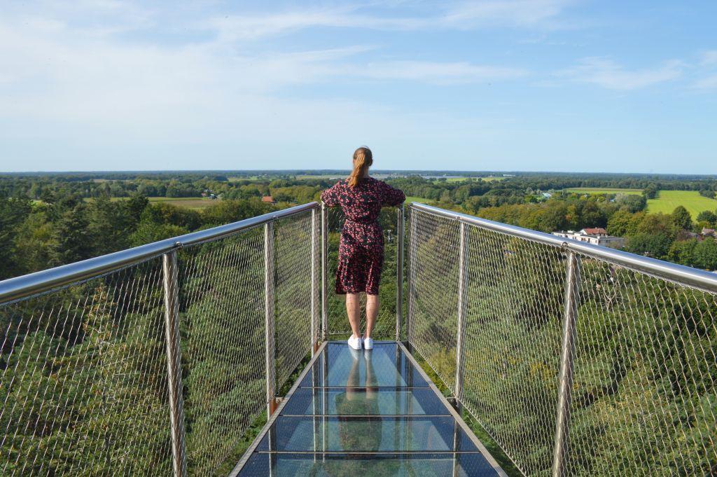 Uitzicht vanaf de Bosbergtoren