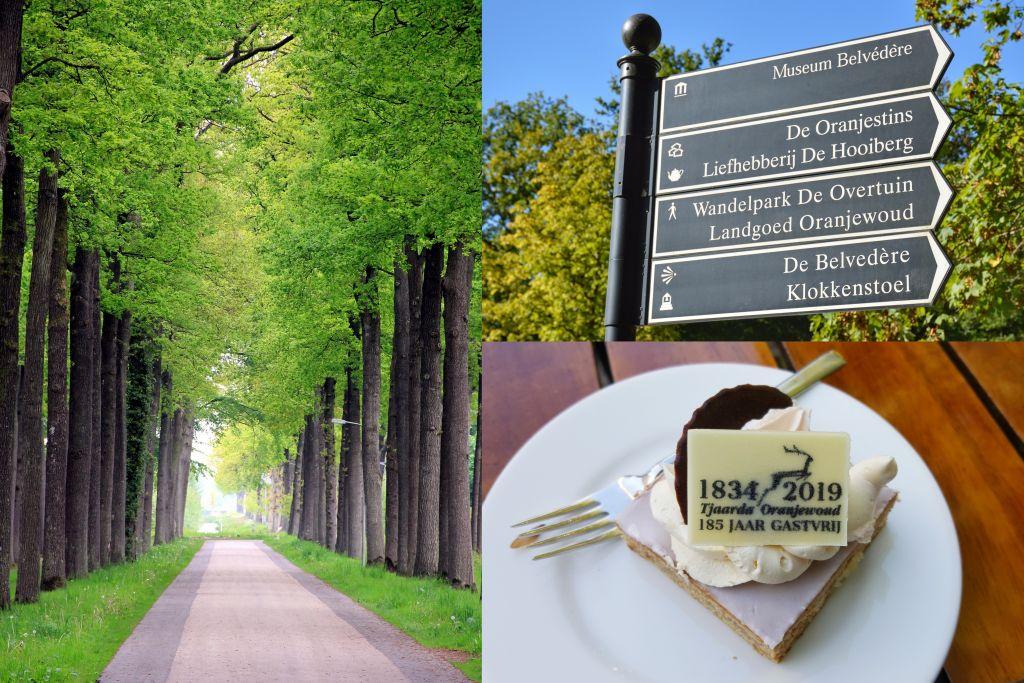 Oranjewoud - Friesland