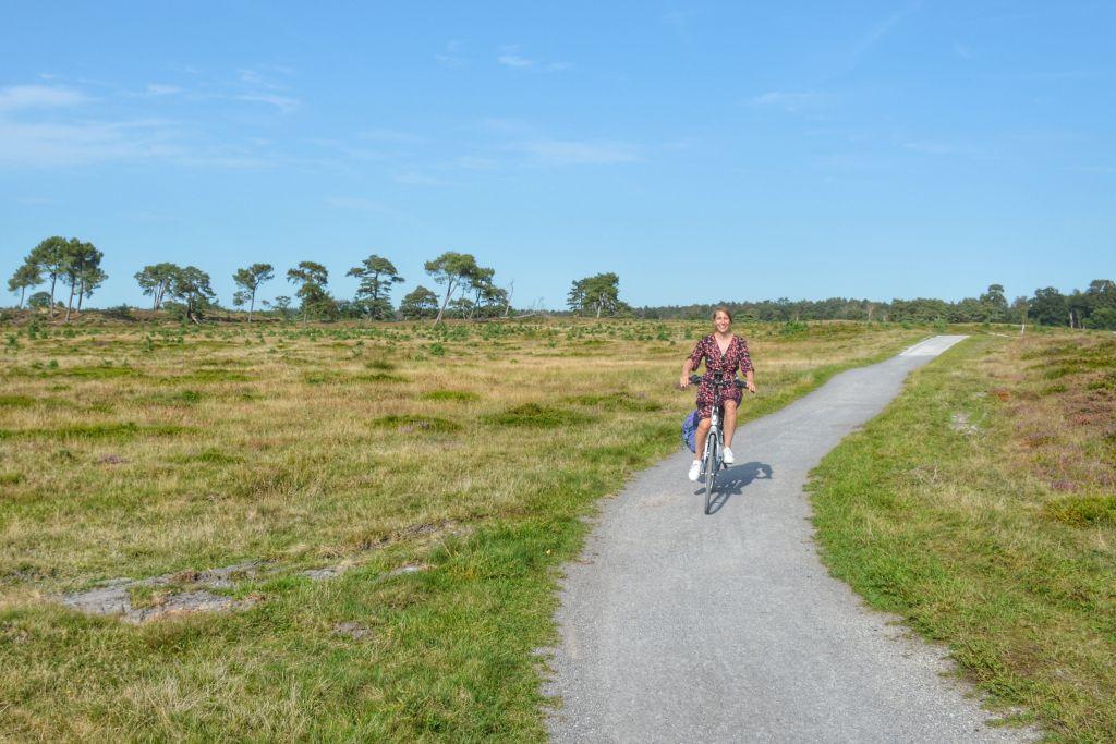 E-bike fietsroute Drents-Friese Wold