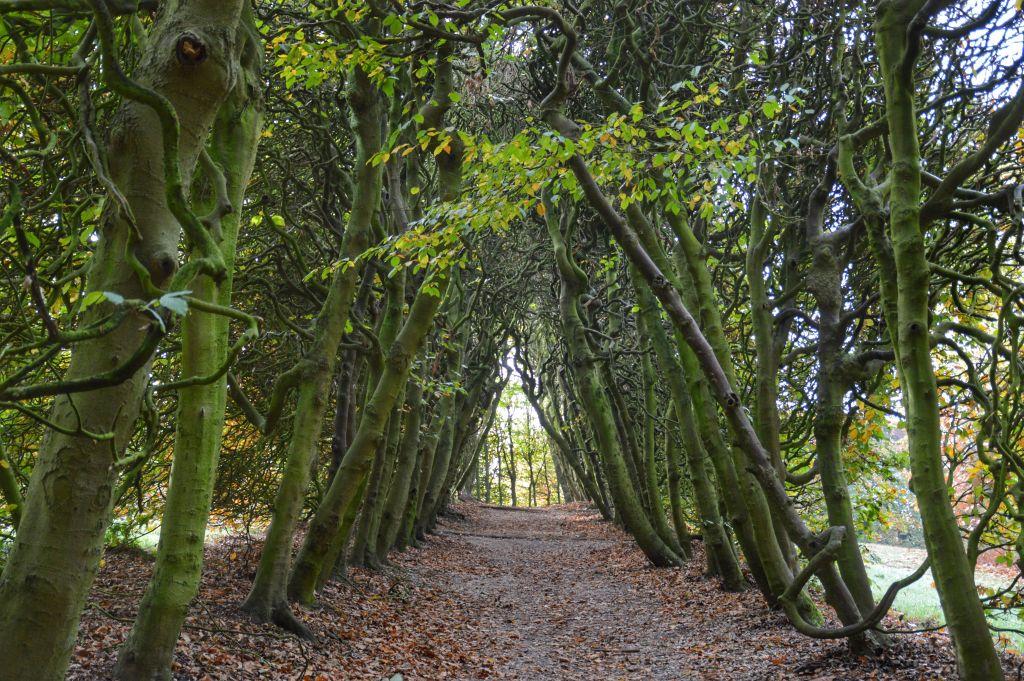 Bijzondere plekken Nederland: Groene Bedstee Oosterbeek