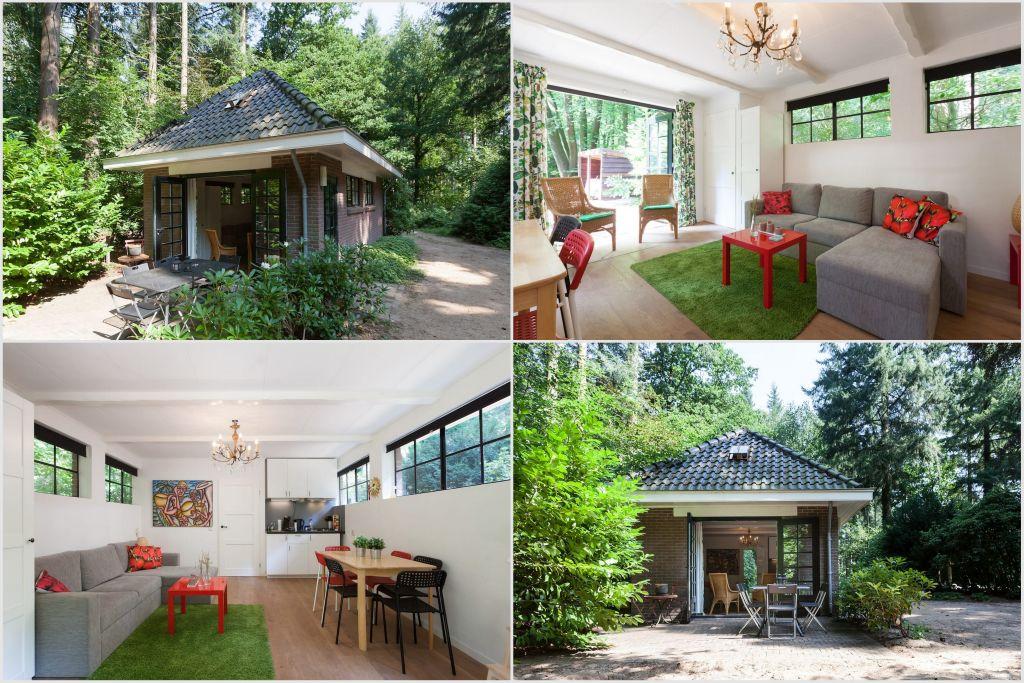 Mooie huisjes in het bos: op de Veluwe