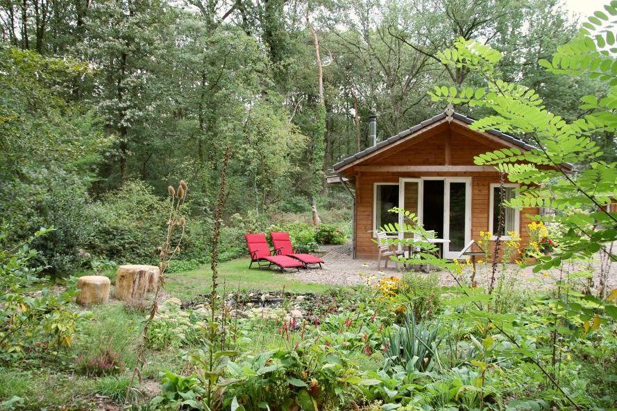 Houten huisje in het bos