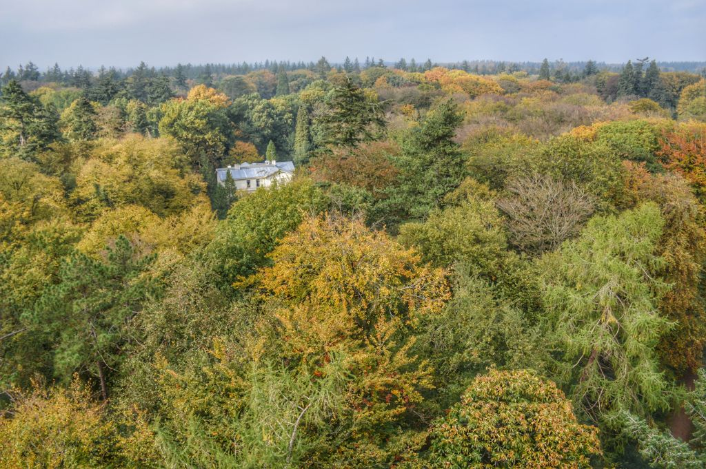 Uitzicht Bostoren Putten