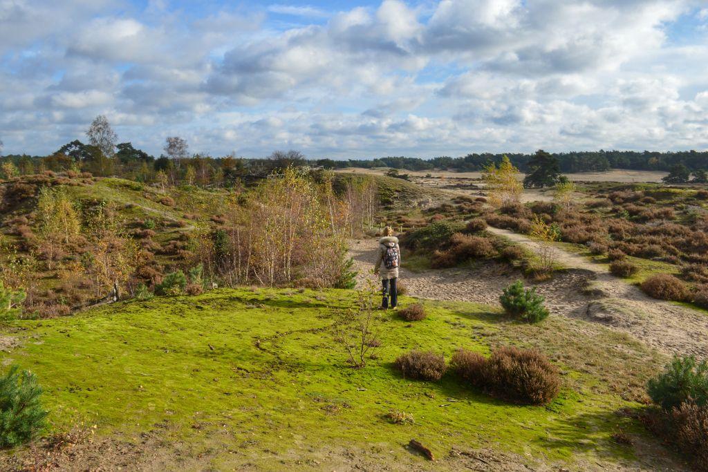 Hulshorsterzand - Mooi uitzicht op de Veluwe