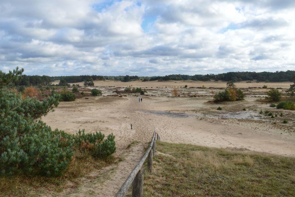 Uitzicht op het Hulshorsterzand - Veluwe