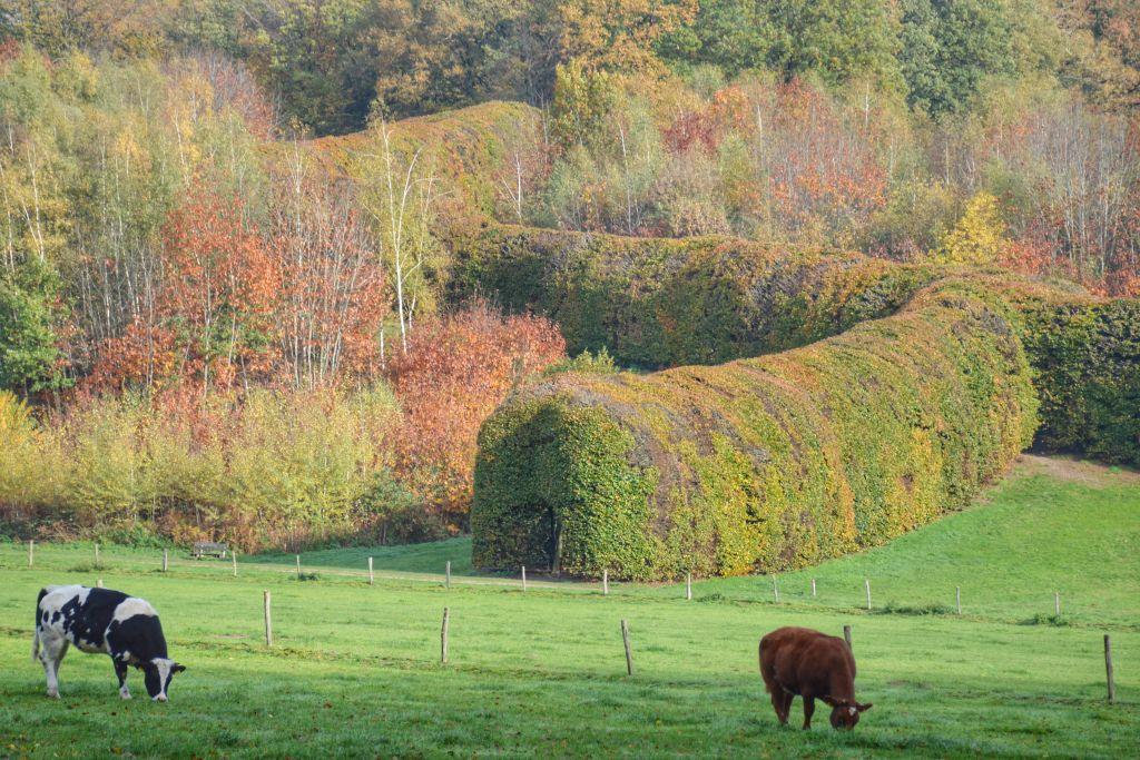 Groene Bedstee Landgoed Mariëndaal