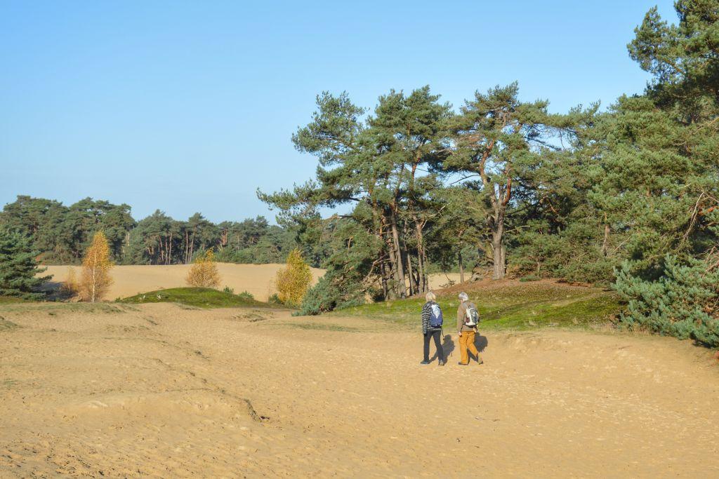Wandelroutes Lunteren: rondje Wekeromse Zand