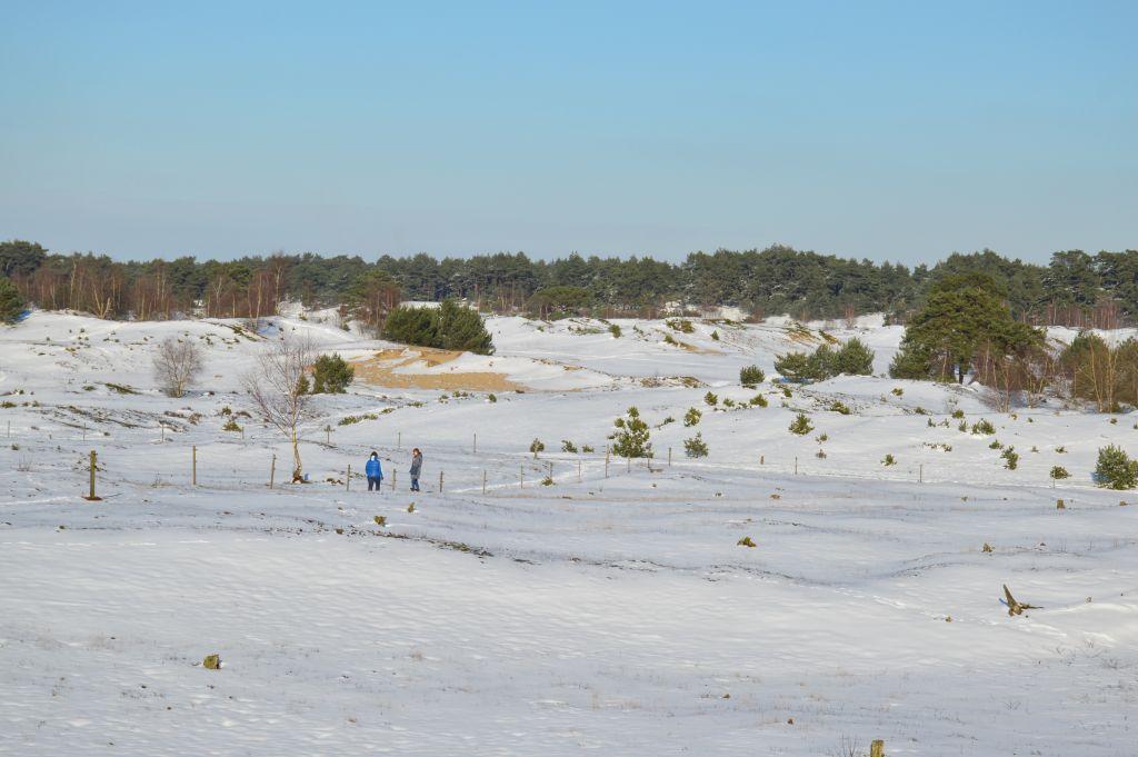 Wekeromse Zand in de sneeuw